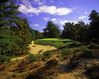 Pine Valley 10th